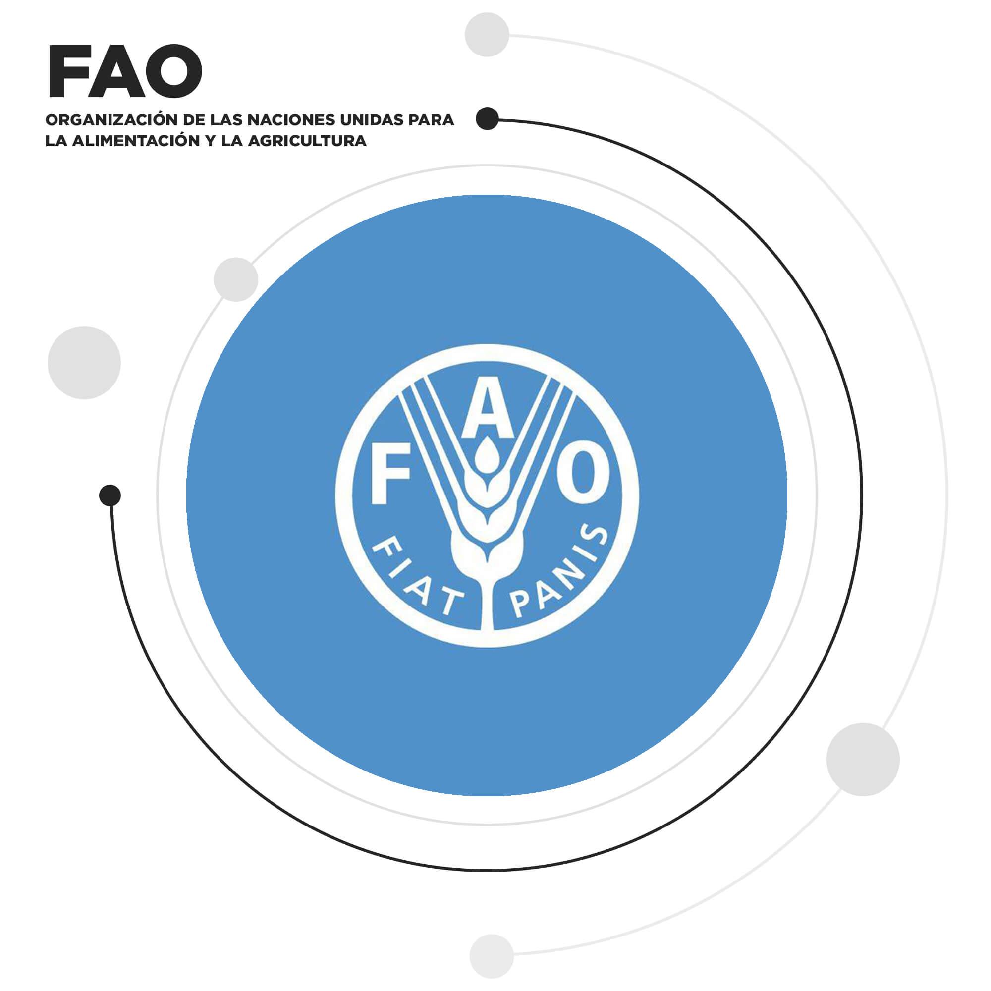 ALIADOS FAO